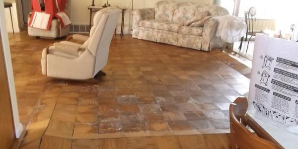 Water Damage Restoration Palm Harbor Company Able Builders, Inc